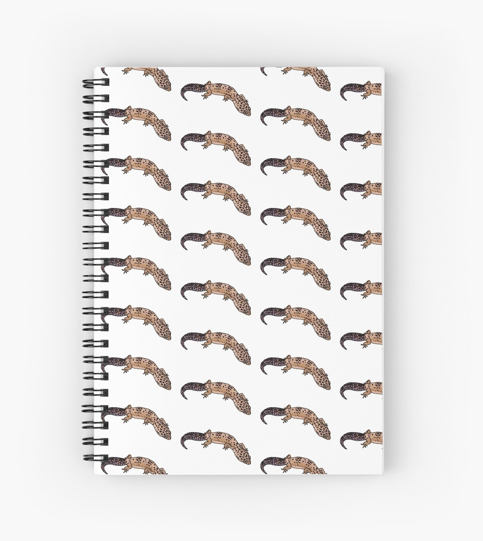 Leopard Gecko by Lindsey N