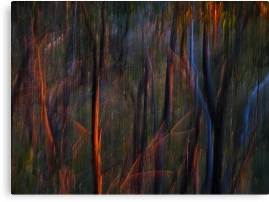 Abstract Ghost Trees at Sunset by Michelle Wrighton