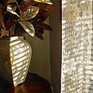 Shadow Vase by hickerson
