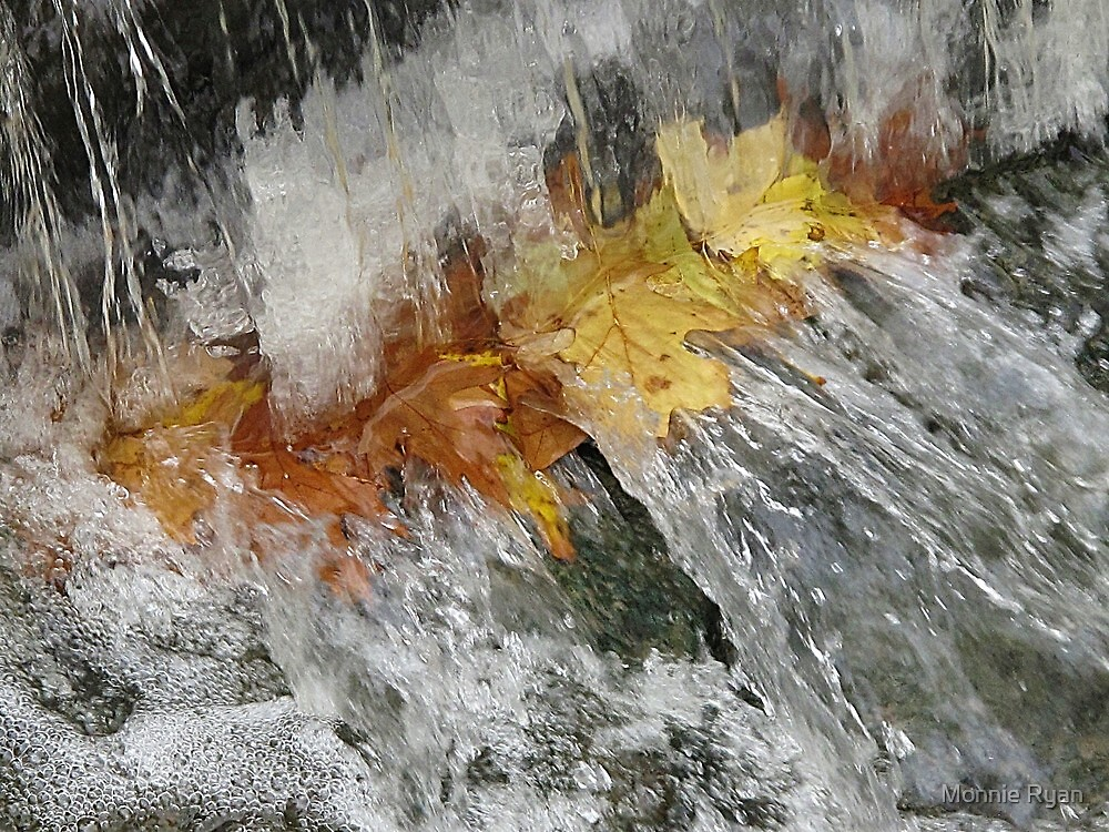 Awash With Color by Monnie Ryan