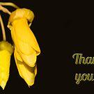 Thank You card - NZ Kowhai flower by Belinda Osgood