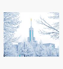 Mt. Timpanogos Temple Frosted Trees 20x24 Photographic Print