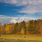 Pastoral Autumn by sundawg7