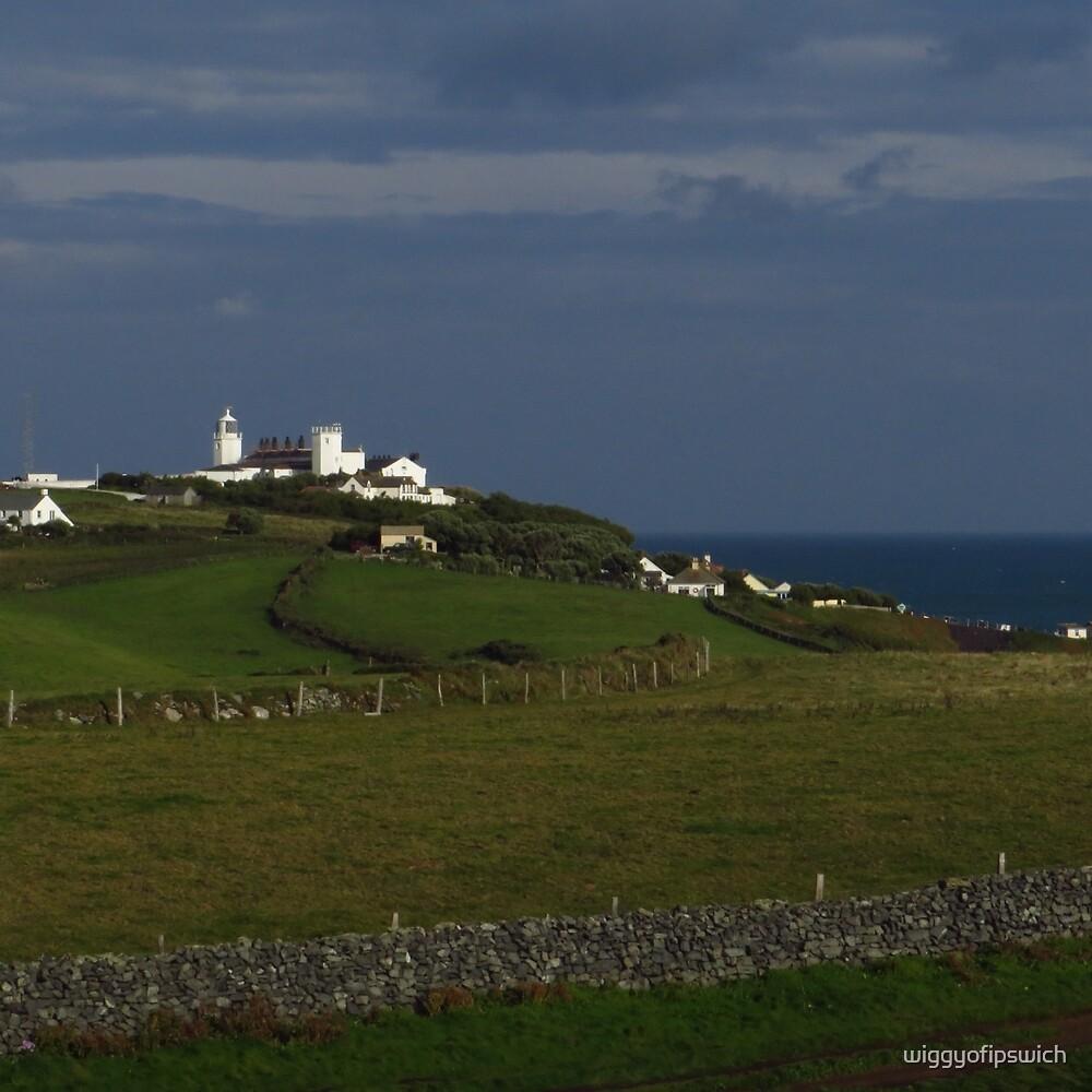 The Lighthouse, Lizard Point by wiggyofipswich