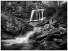 B. Reynolds Falls Oct 2011 by Aaron Campbell