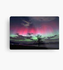 Red Auroras & the tree Metal Print