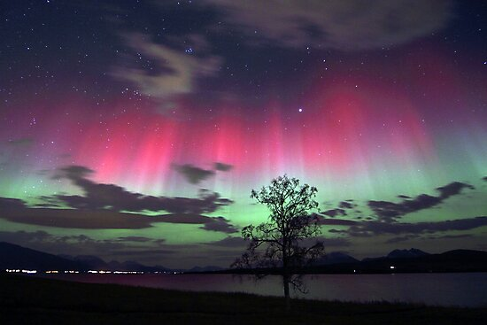 Red Auroras & the tree by Frank Olsen