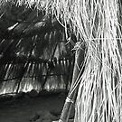 Native American Hut by James2001