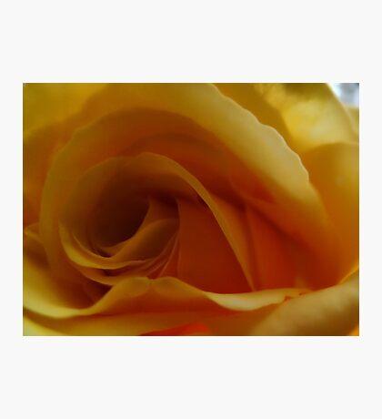 Center of Yellow Fotodruck