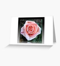 Sweet Serenity - Pink Rose in Reflection Frame Greeting Card