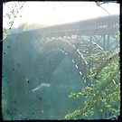 New River Gorge by Sarah Thompson-Akers