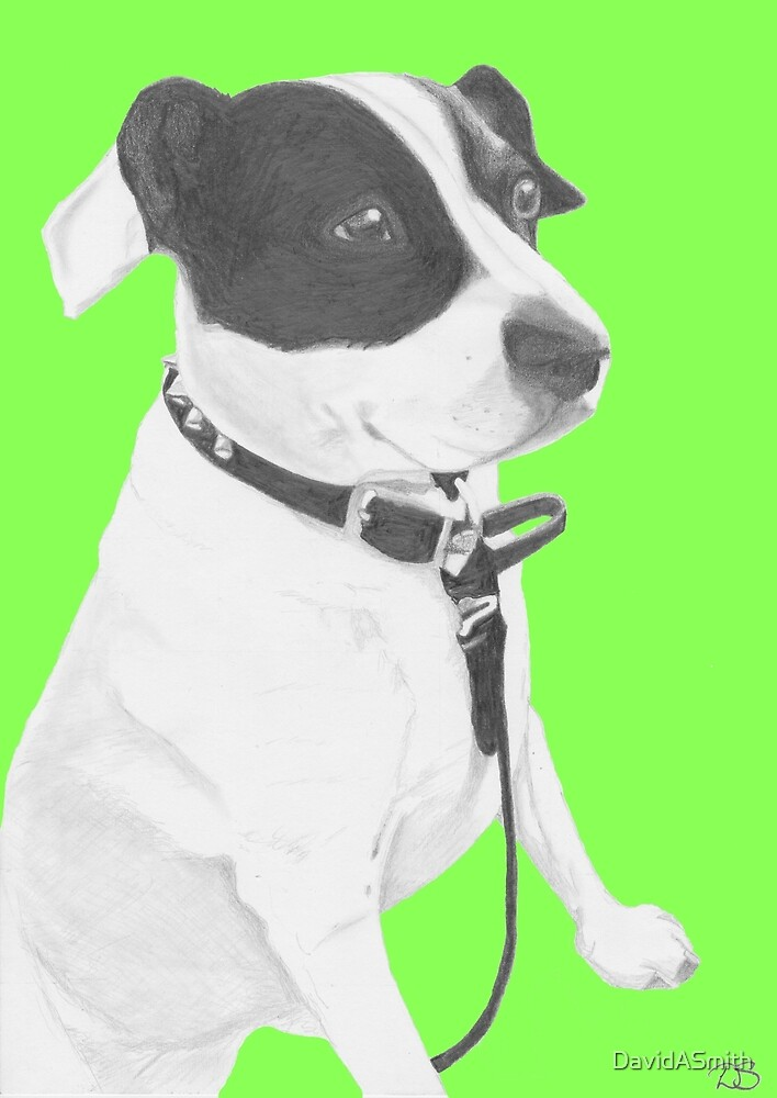 Jack Russell Crossbreed in green by DavidASmith