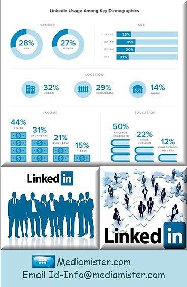 LinkedIn Usage Among Key Demographics by mediamister