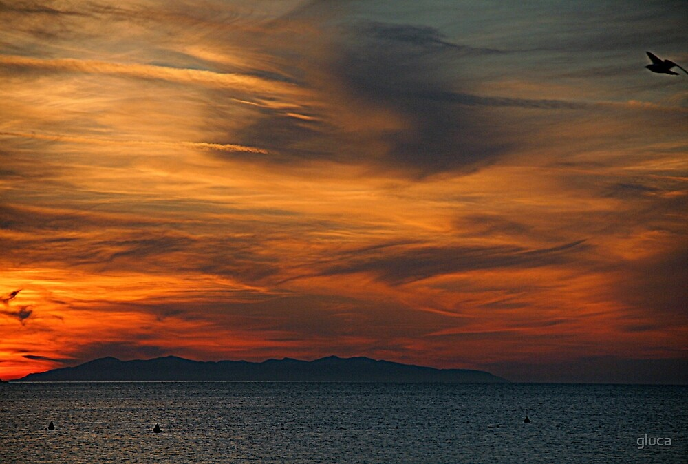 Capraia's island at dawnn by gluca