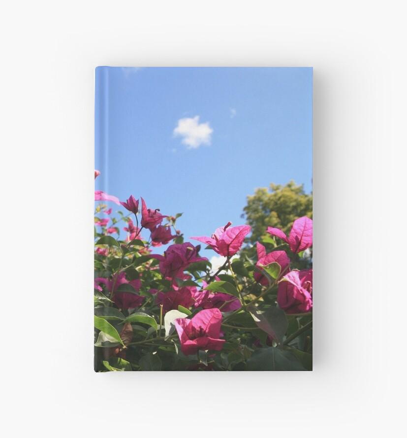 Pink Flowers, Blue Sky 2 by m-milisavljevic