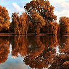 Autumn Reflection by Mariann Kovats