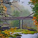 Tumwater Falls Bridge von William Carney