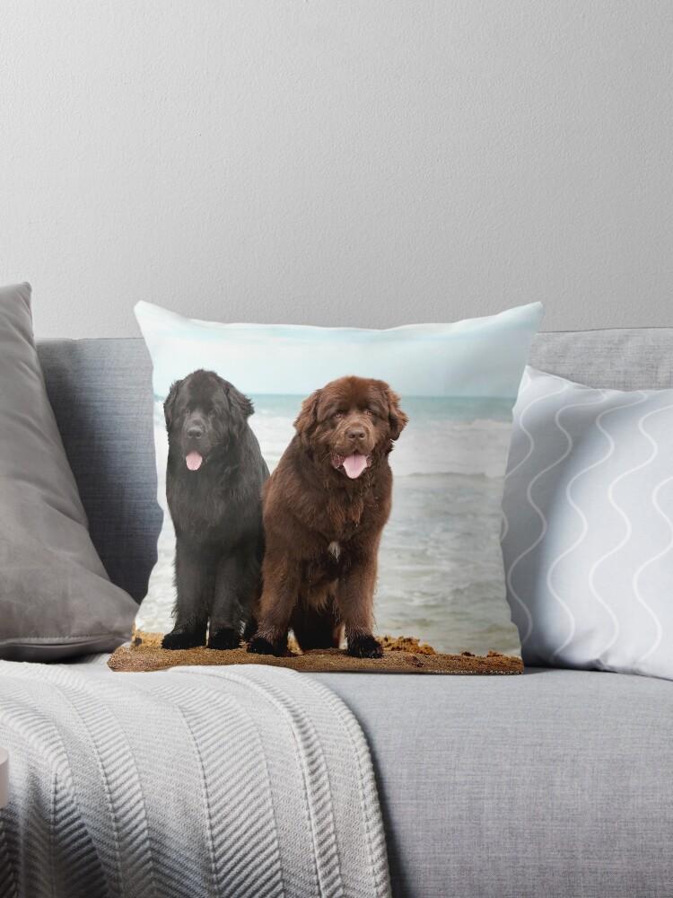 Newfoundland Dogs by Tawnydal