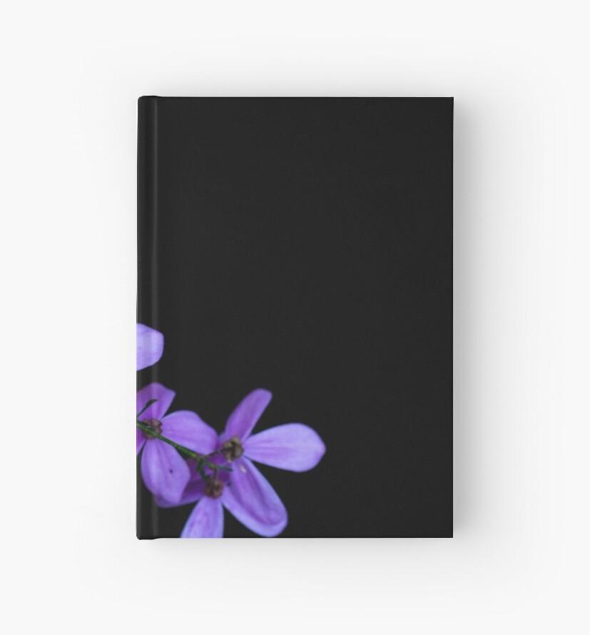 Purple flower by Joshua Westendorf