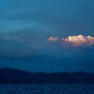 Rose Cloud by Valerie Rosen