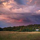 Negaiss Gūlbenes Rajonā | A Storm in the Gulbene District by Roberts Birze