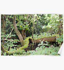 forest hunter Poster