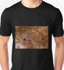 Glassfish, Wakatobi National Park, Indonesia T-Shirt