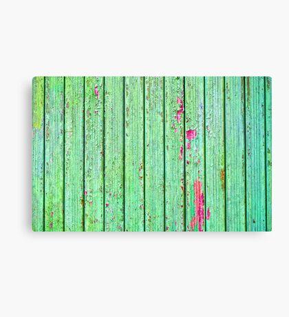 Green plank door Canvas Print