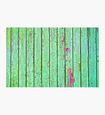 Green plank door Photographic Print