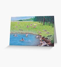 """Sitting Ducks"" Greeting Card"
