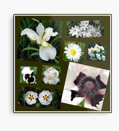 White Summer Flowers Collage Metallbild