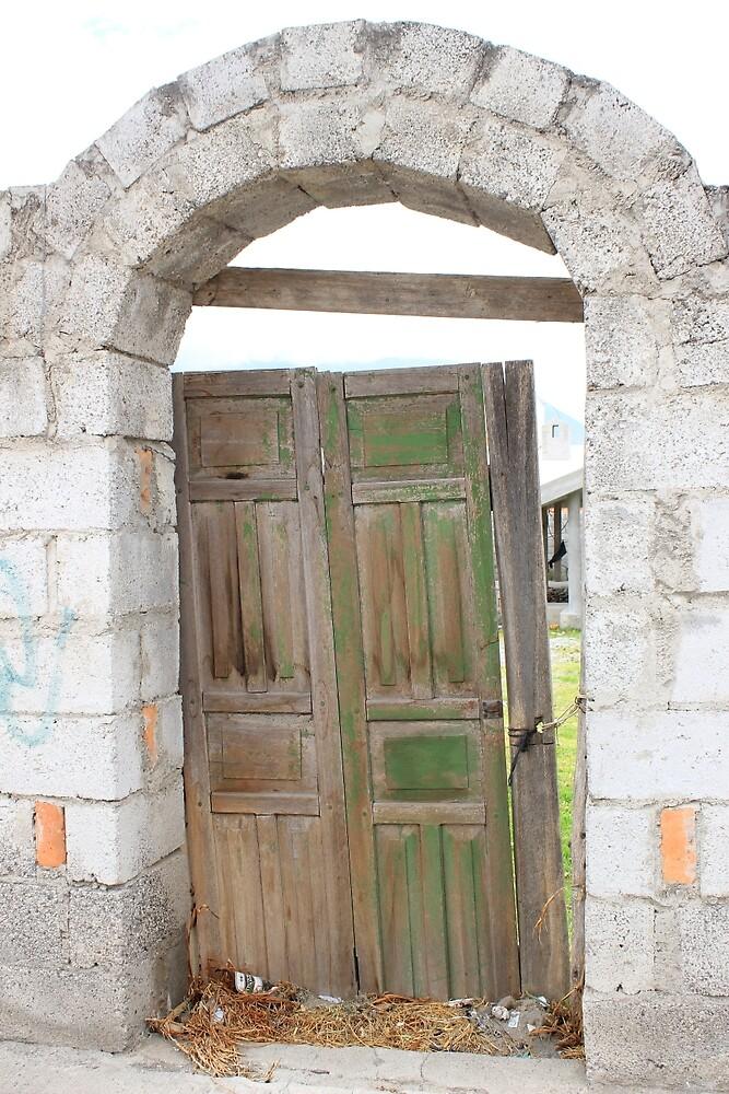 Old Door in a Brick Wall by rhamm