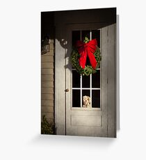 Winter - Christmas - Clinton, NJ - Christmas puppy  Greeting Card