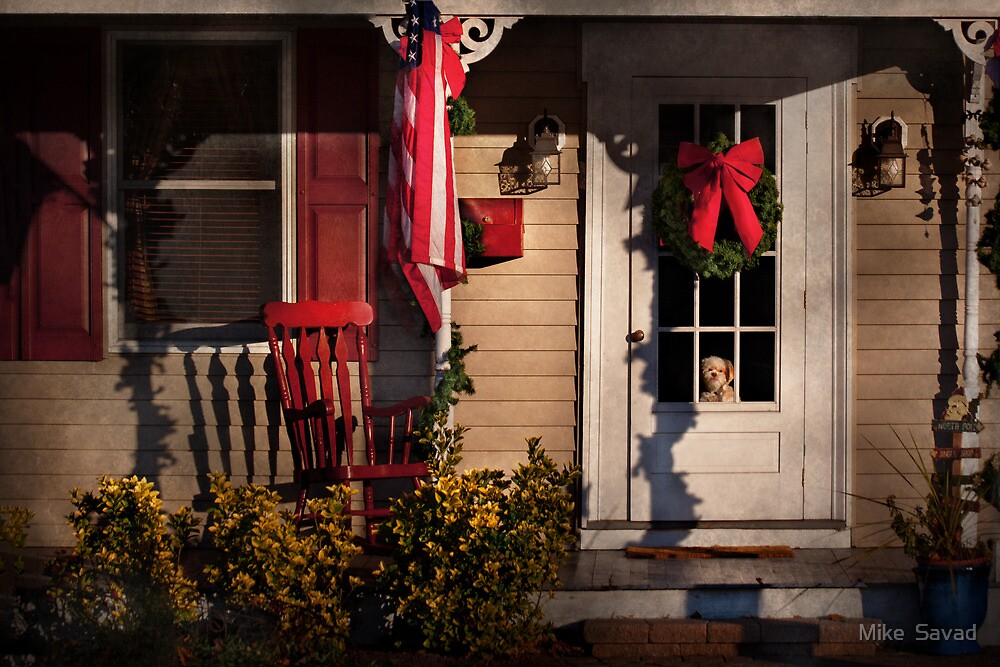 Winter - Christmas - Clinton, NJ - How much is that doggy in the window by Mike  Savad