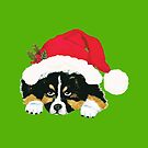 Black Tri Australian Shepherd Christmas Puppy by Barbara Applegate