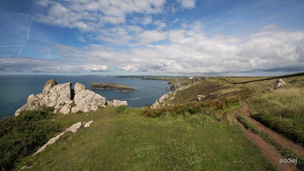 South west coast path by eddiej