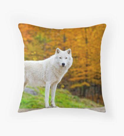 Arctic Fall  Throw Pillow
