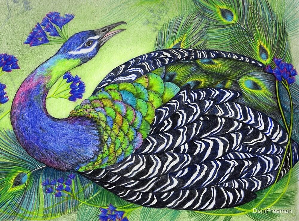 Peacock by DeniFreeman