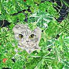 CNN: Cat Neath Nasturtiums by EllenCoffin