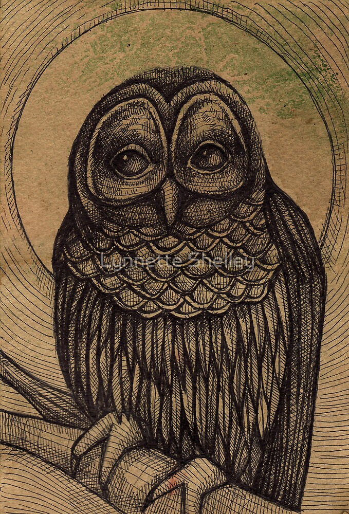 Hoot Owl by Lynnette Shelley