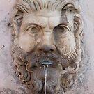 Fountain, Rome by Barbara Wyeth