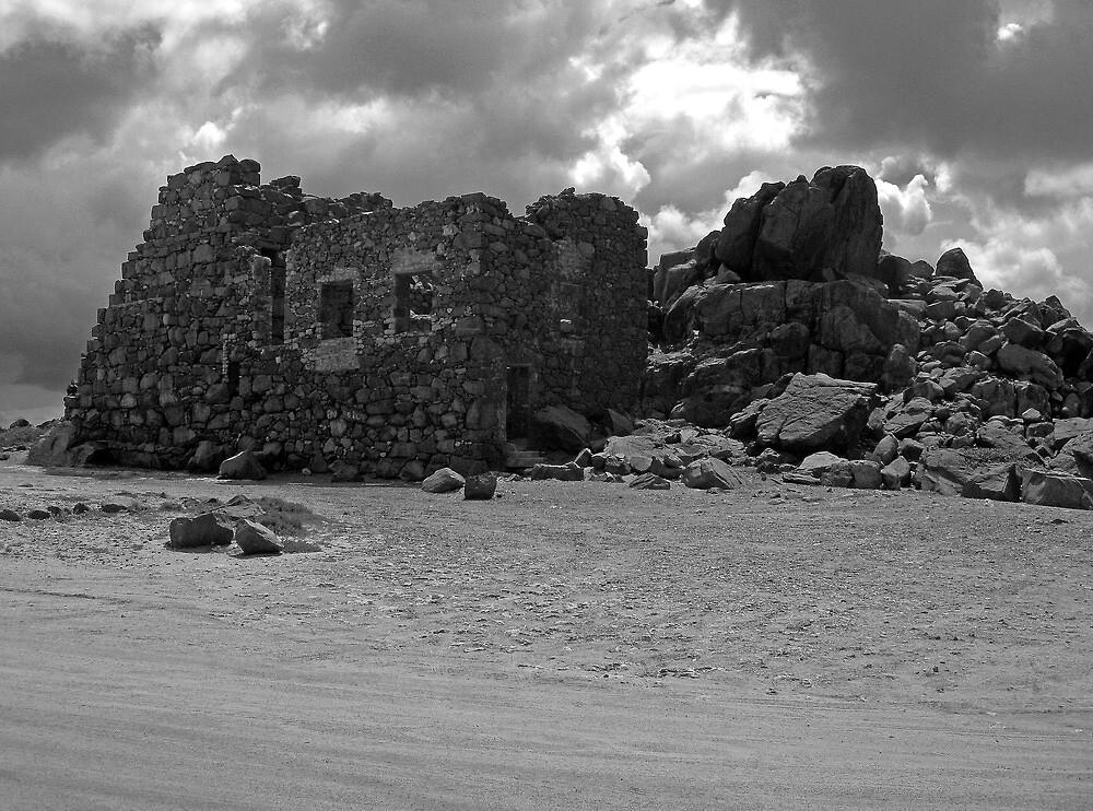 Bushiribana Ruins Aruba  by John  Kapusta