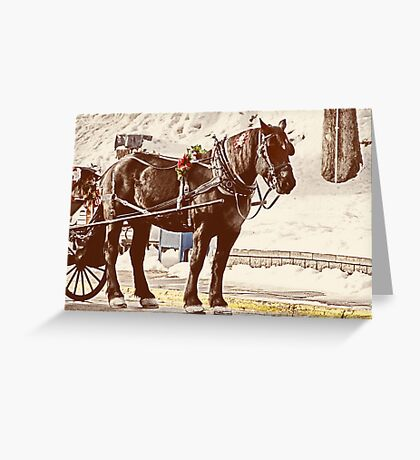 Horse and Buggy Greeting Card