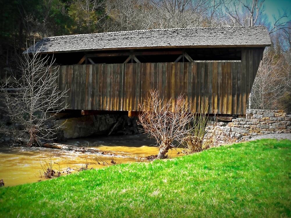 Bridge  by Paul Lubaczewski