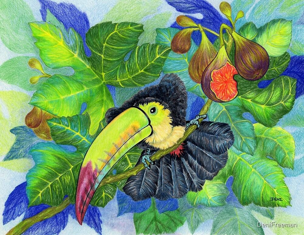 Toucan by DeniFreeman