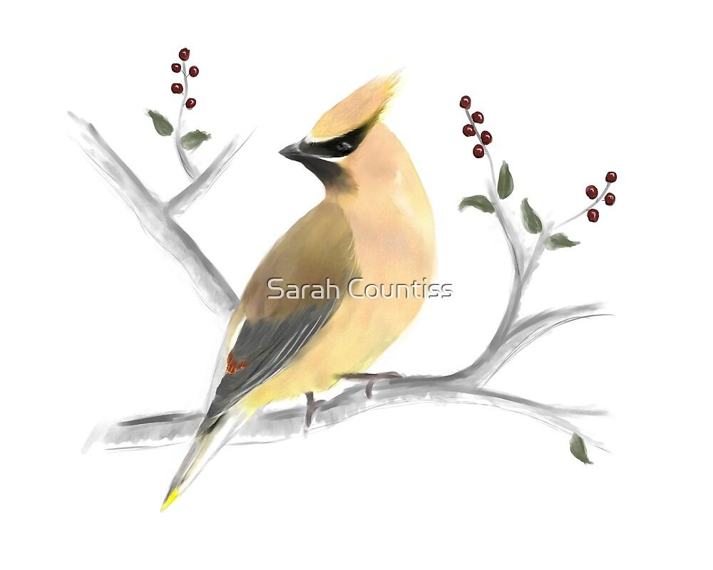 Watercolor Cedar Waxwing by Sarah Countiss