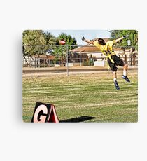 Just Do It!!!  Canvas Print