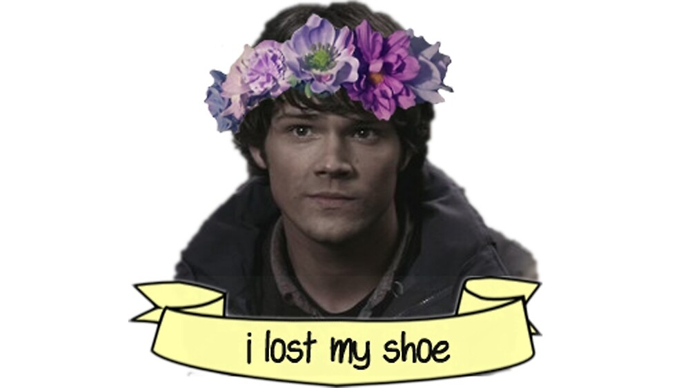 Missing Shoe by allibis