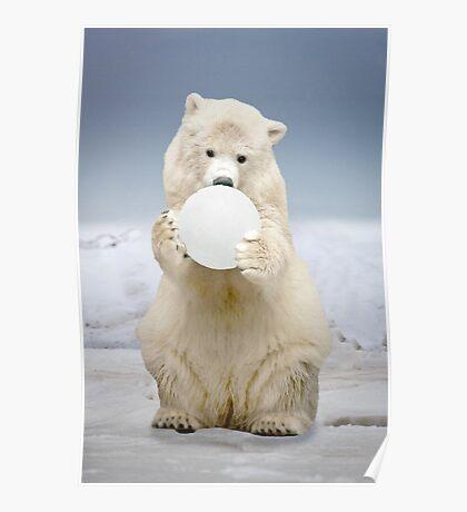 """Polar Bowl"" Poster"
