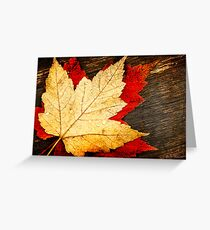 Red and Gold Leaves Greeting Card